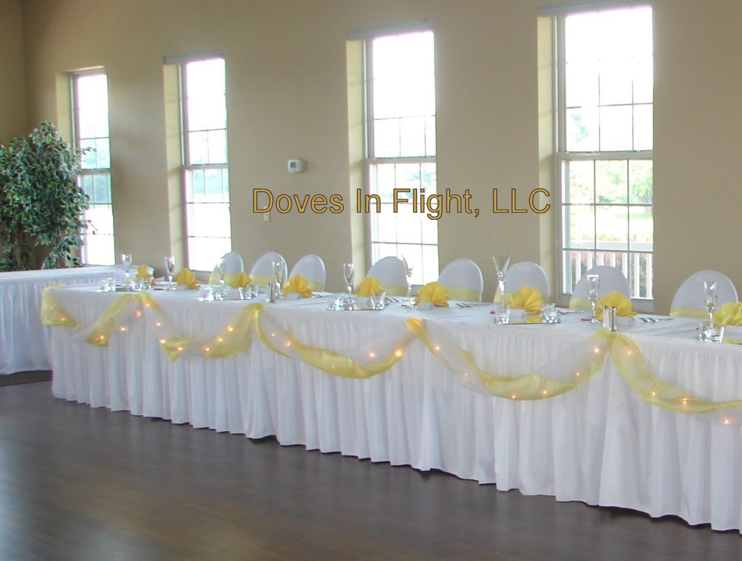 Decorating Tables With Tulle Photograph Hawk Hollow Head T